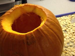 Lusk Pumpkin