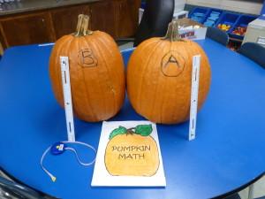 Furman Pumpkins
